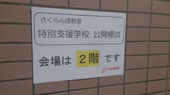 DSC_4937.JPG